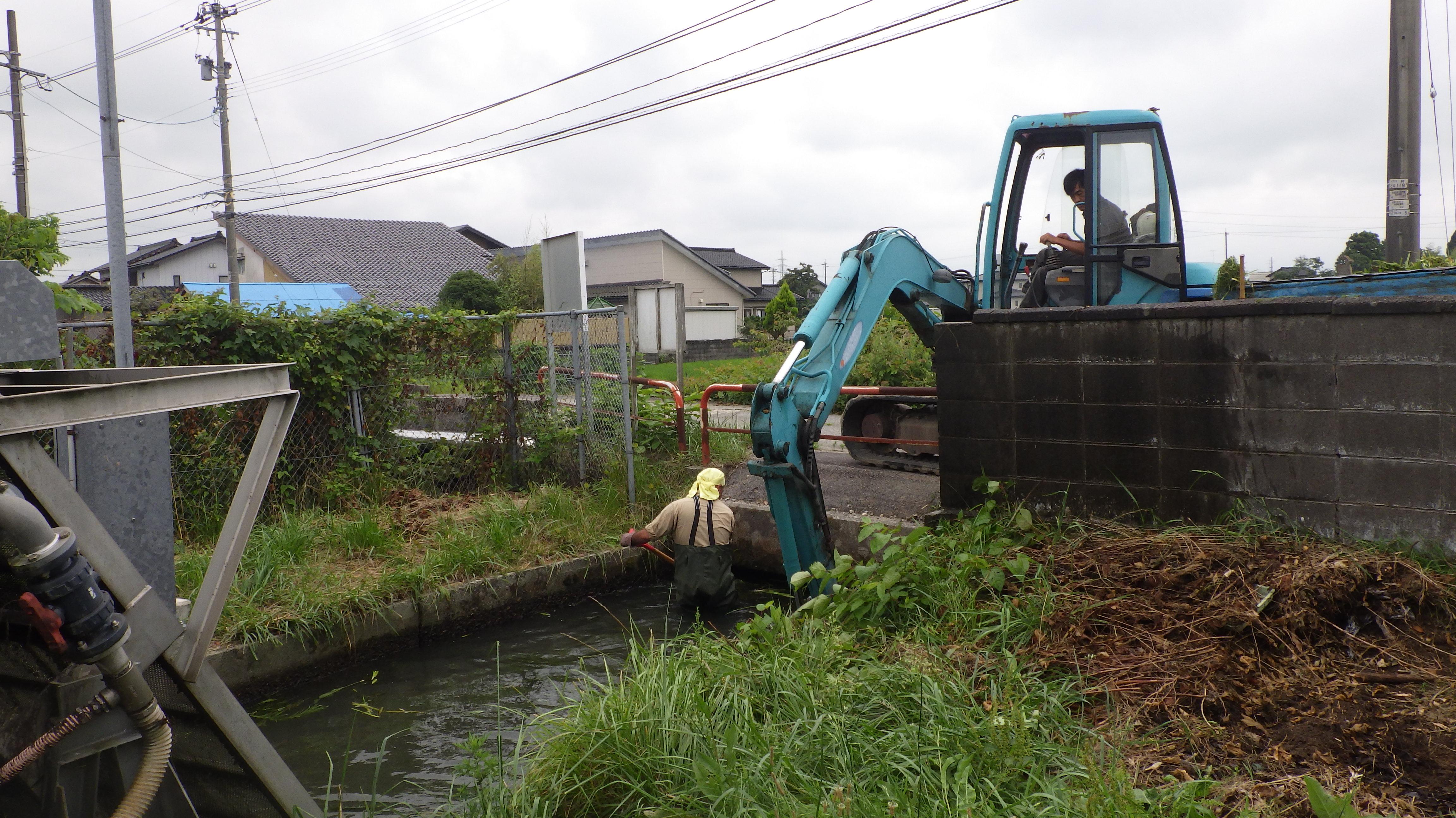 親司川、場内藻刈り作業