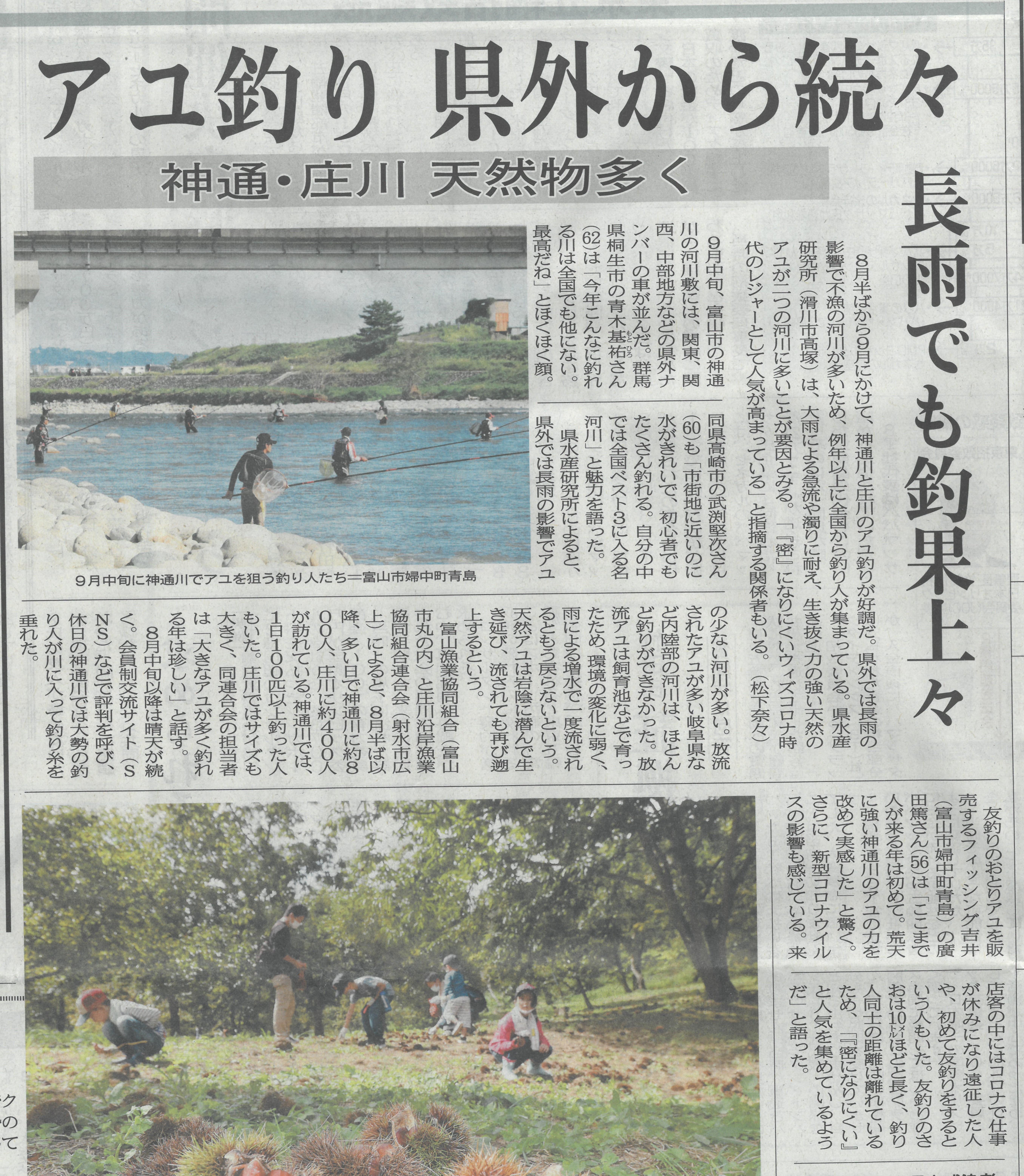 北日本新聞 長雨でも釣果上々