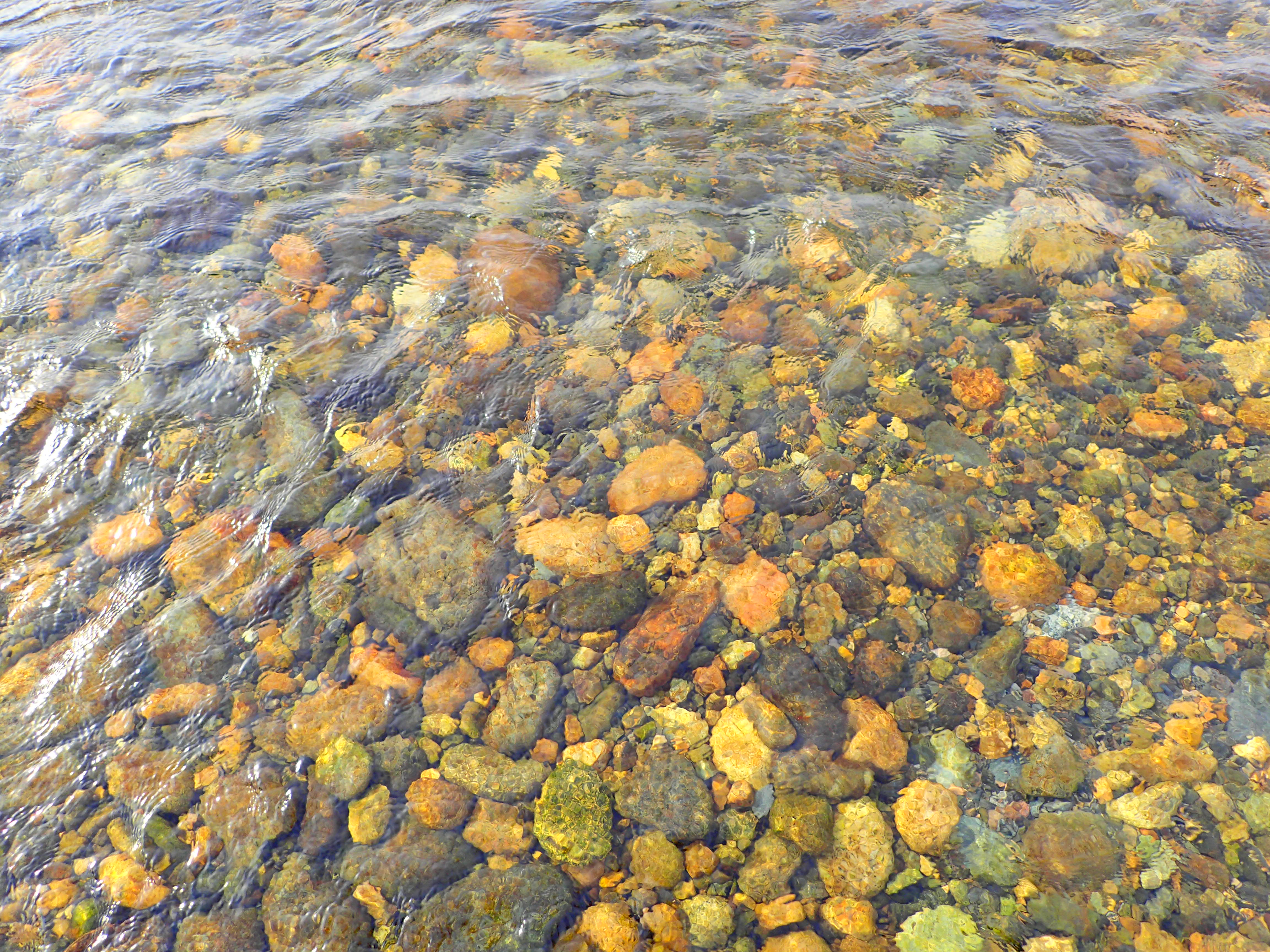川の様子 鮎産卵状況