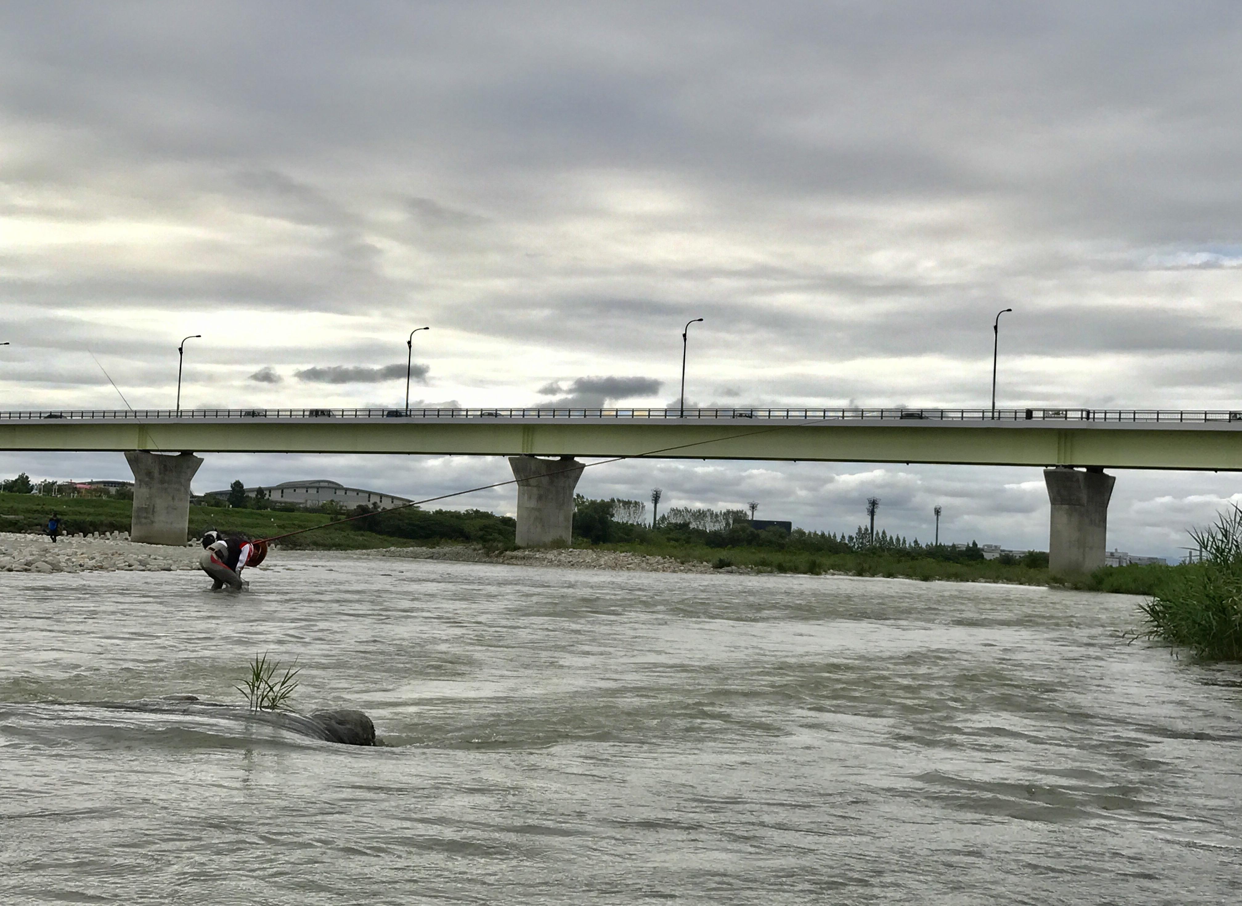 アユ釣果情報と川の様子