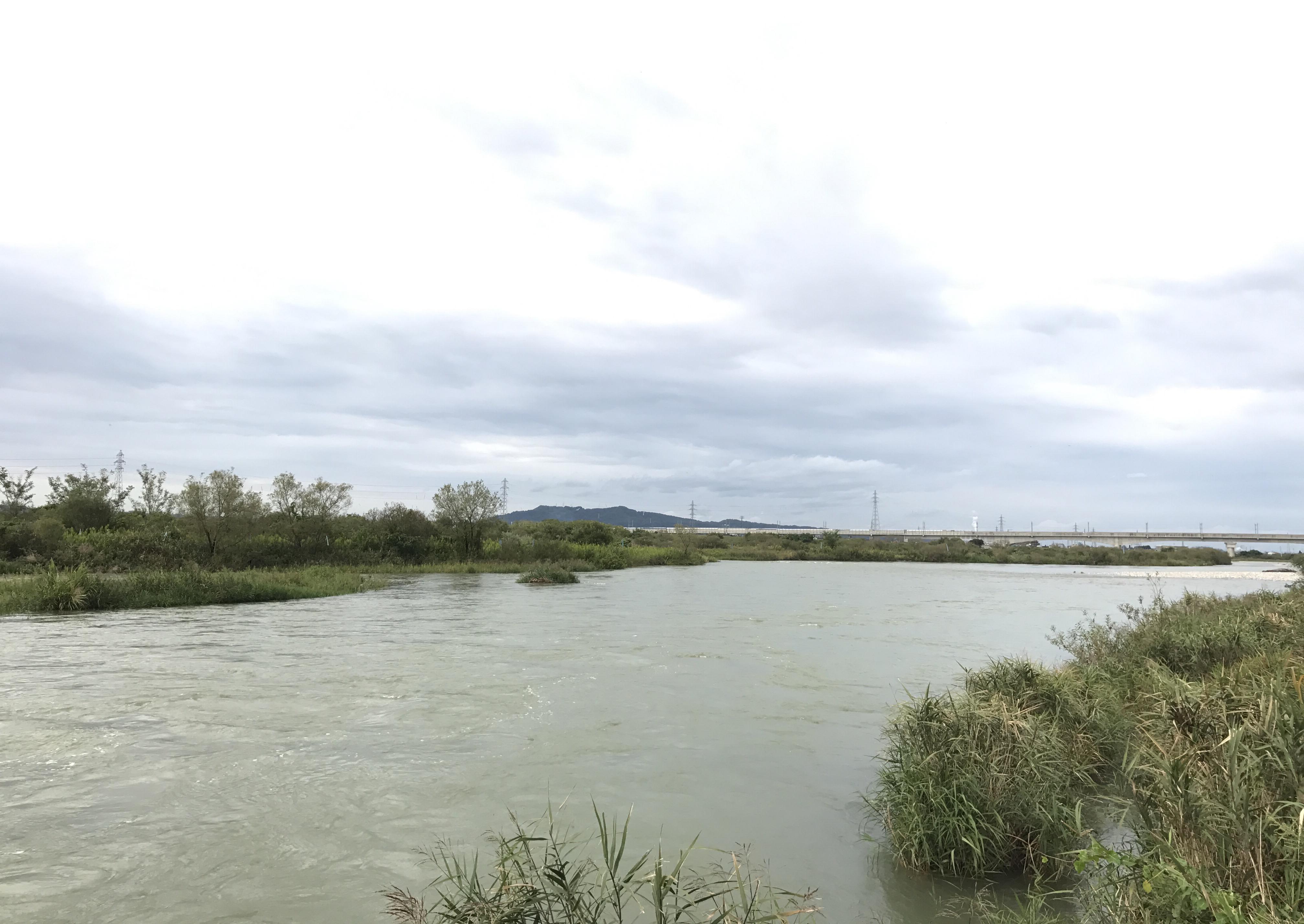 川の様子 増水