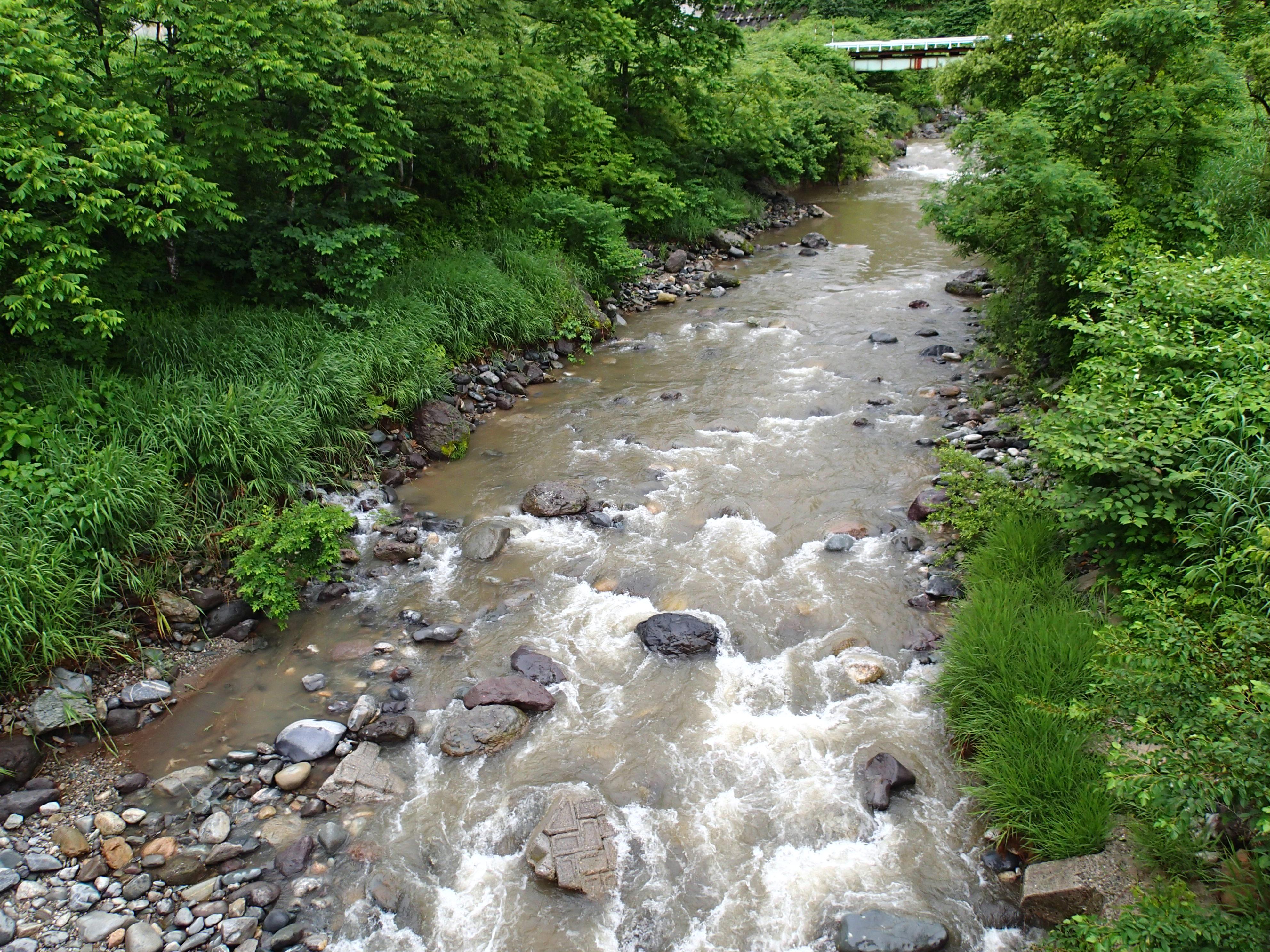 ダム上流域におけるアユ資源造成調査研究