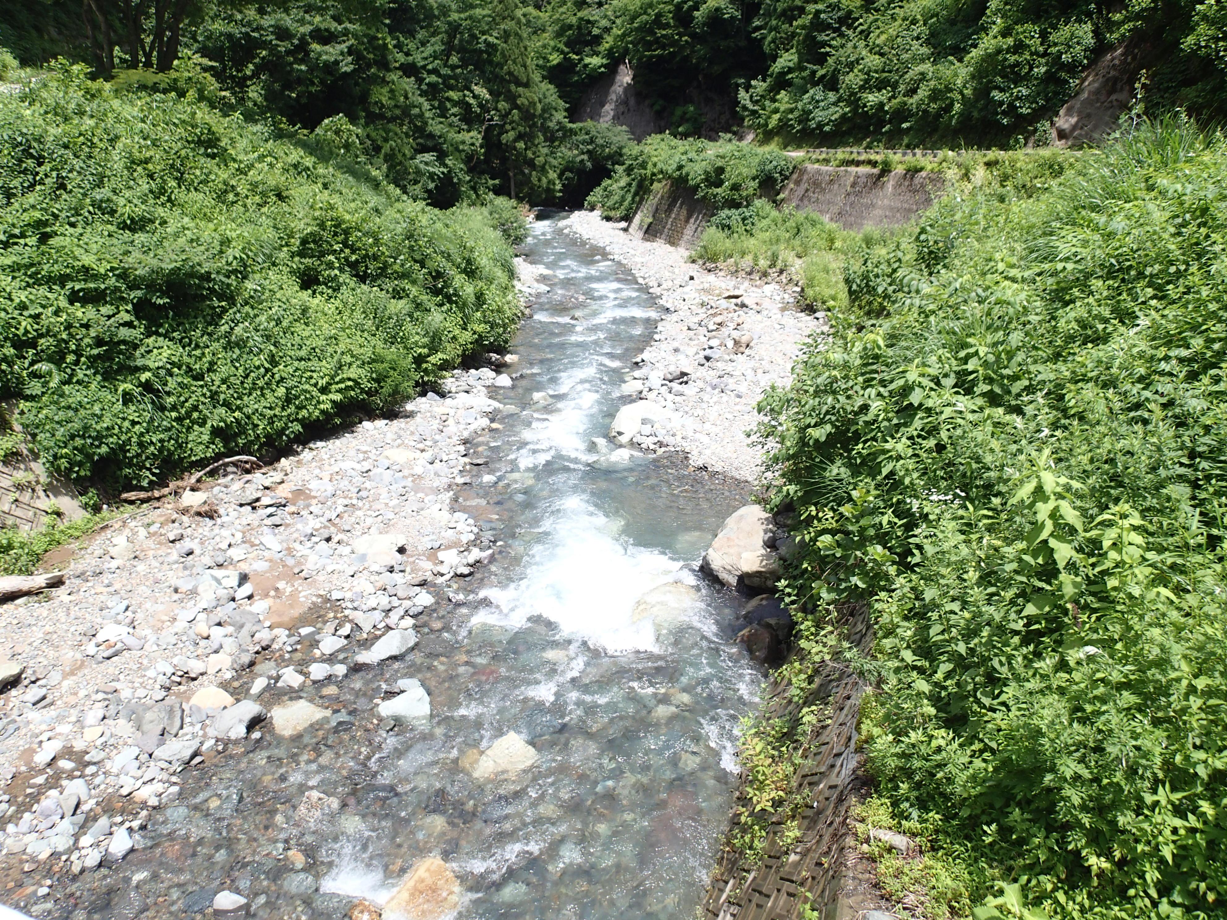 上流域 川の様子