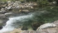 利賀川の様子