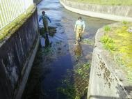 川の様子.水量増加、濁りあり