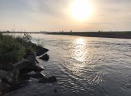 川の様子 5月に入り