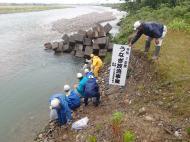 ウナギ幼魚放流.合口ダムより下流域