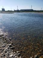 川の様子.禁漁区看板設置