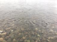 川の様子 気温低下