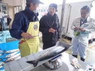 サケ回帰親魚効果調査のための耳石採取