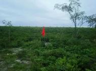 禁漁区間目印