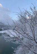 山間部で久しぶりの降雪